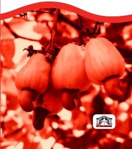 plantio cor red