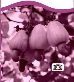 plantio cor uva